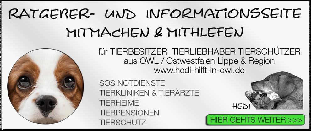 TIERKLINIK BIELEFELD TIERKLINIKEN NOTDIENST TIERÄRZTE TIERNOTDIENST TIEROPERATION OWL OSTWESTFALEN LIPPE TIERHILFE TIERSCHUTZ TIERHEIME 15
