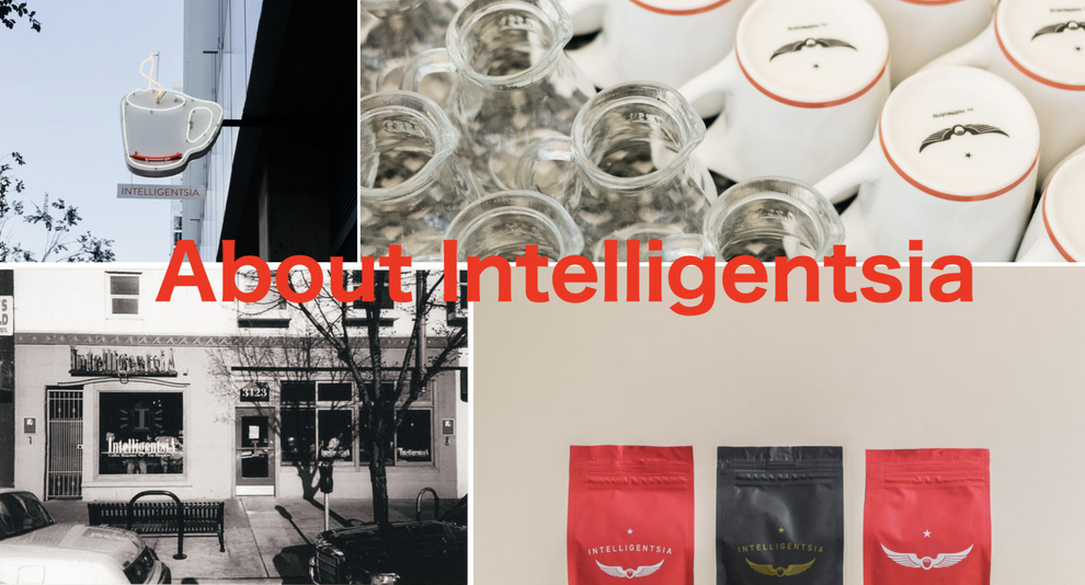 About Intelligentsia
