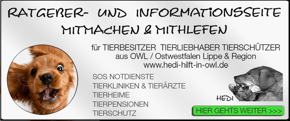 p01 TIERKLINIK BIELEFELD TIERKLINIKEN TIERÄRZTE TIERARZT NOTDIENST TIERNOTDIENST TIEROPERATION TIERNOTFALL OWL OSTWESTFALEN LIPPE TIERSCHUTZ TIERHILFE