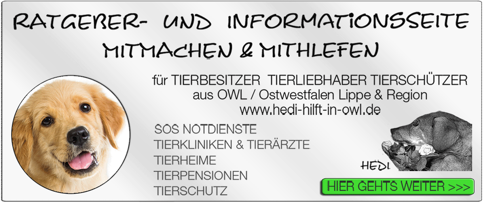 TIERKLINIK BIELEFELD TIERKLINIKEN NOTDIENST TIERÄRZTE TIERNOTDIENST TIEROPERATION OWL OSTWESTFALEN LIPPE TIERHILFE TIERSCHUTZ TIERHEIME 22