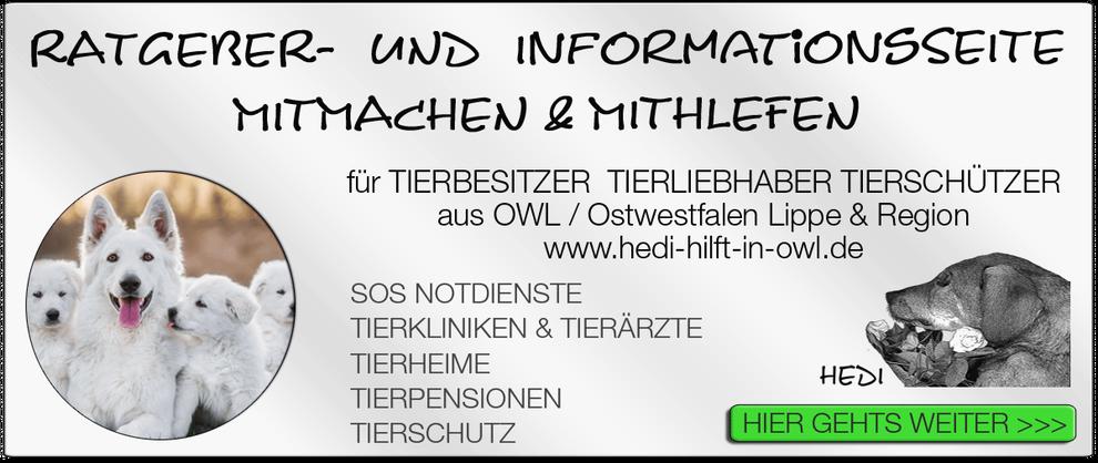 TIERKLINIK BIELEFELD TIERKLINIKEN NOTDIENST TIERÄRZTE TIERNOTDIENST TIEROPERATION OWL OSTWESTFALEN LIPPE TIERHILFE TIERSCHUTZ TIERHEIME 17
