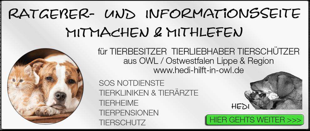 TIERKLINIK BIELEFELD TIERKLINIKEN NOTDIENST TIERÄRZTE TIERNOTDIENST TIEROPERATION OWL OSTWESTFALEN LIPPE TIERHILFE TIERSCHUTZ TIERHEIME 01