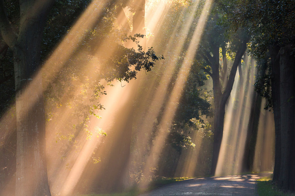 Zonneharpen Oudemolen © JurjenVeerman