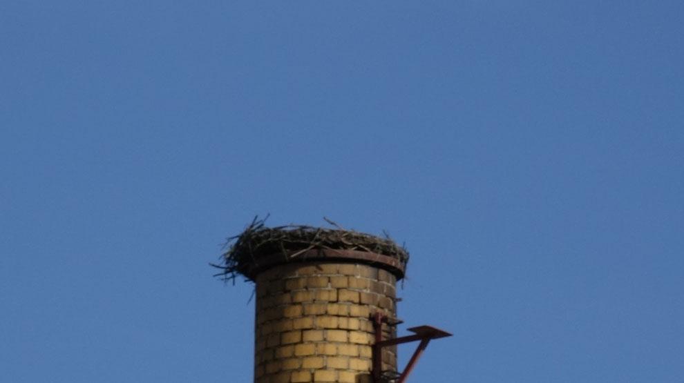In diesem Storchennest sind im Frühling, wenn es wieder warm ist, Störche anzutreffen. Im Moment ist es aber ein NEST IM WINTERZUSTAND.
