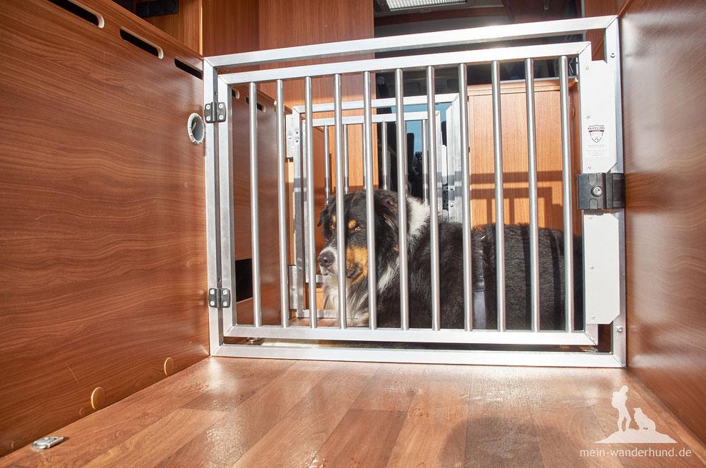 neues hundegitter hundebox f rs wohnmobil wandern mit hund. Black Bedroom Furniture Sets. Home Design Ideas