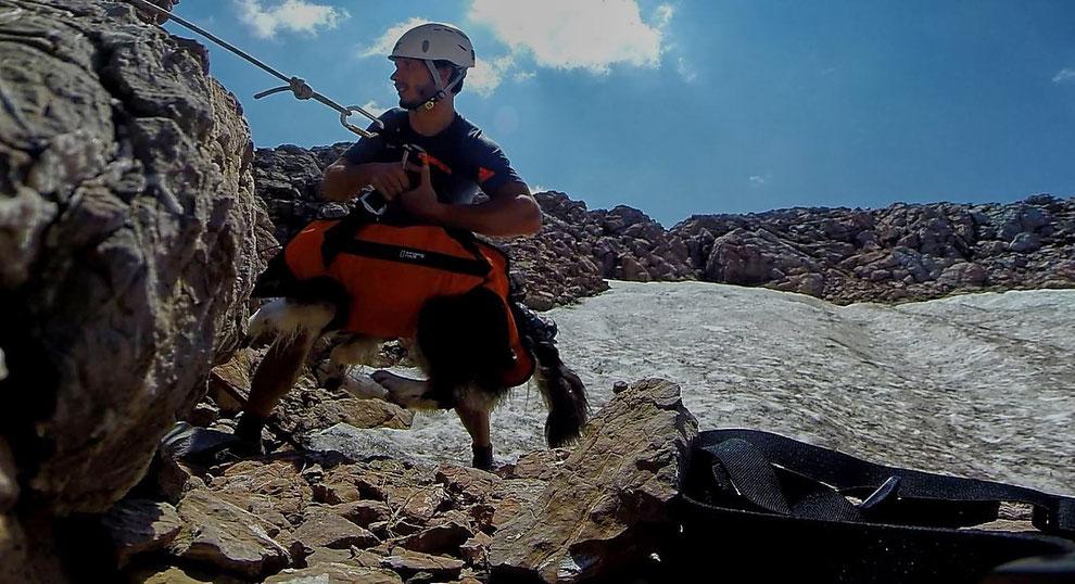 Bergwacht rettet Hund