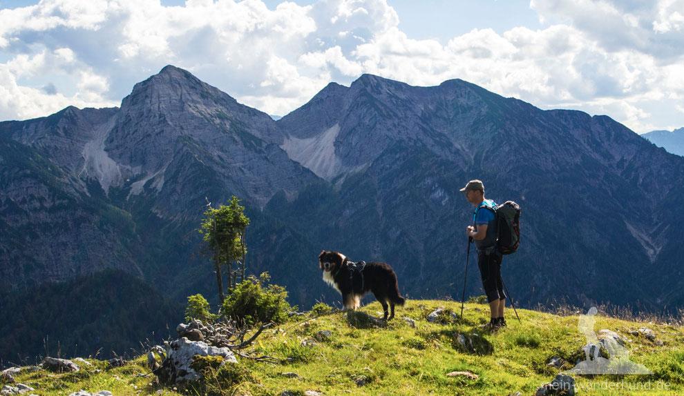 Wandern mit Hund am Rauschberg