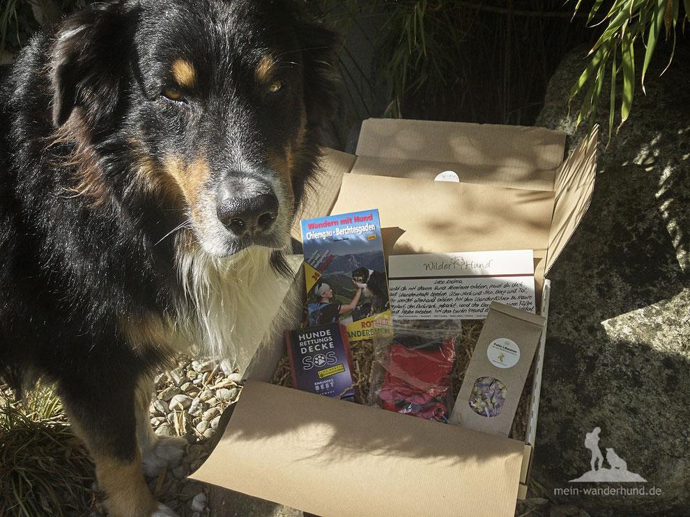 mein-wanderhund;Andrea Obele; Test Keen Schuh Terradora;