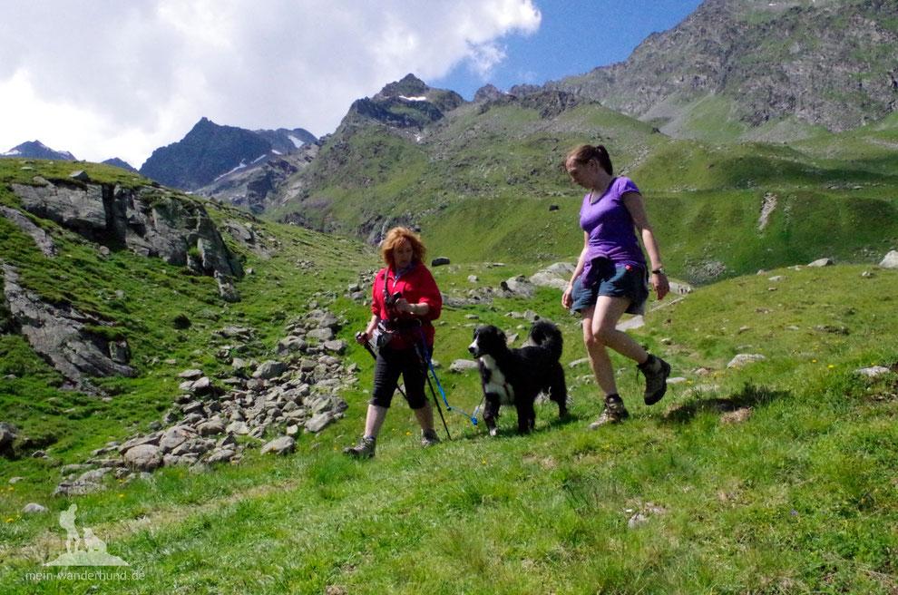 Seminar Berg-Wandern mit Hund Tipps zum Bergwandern mit Hund