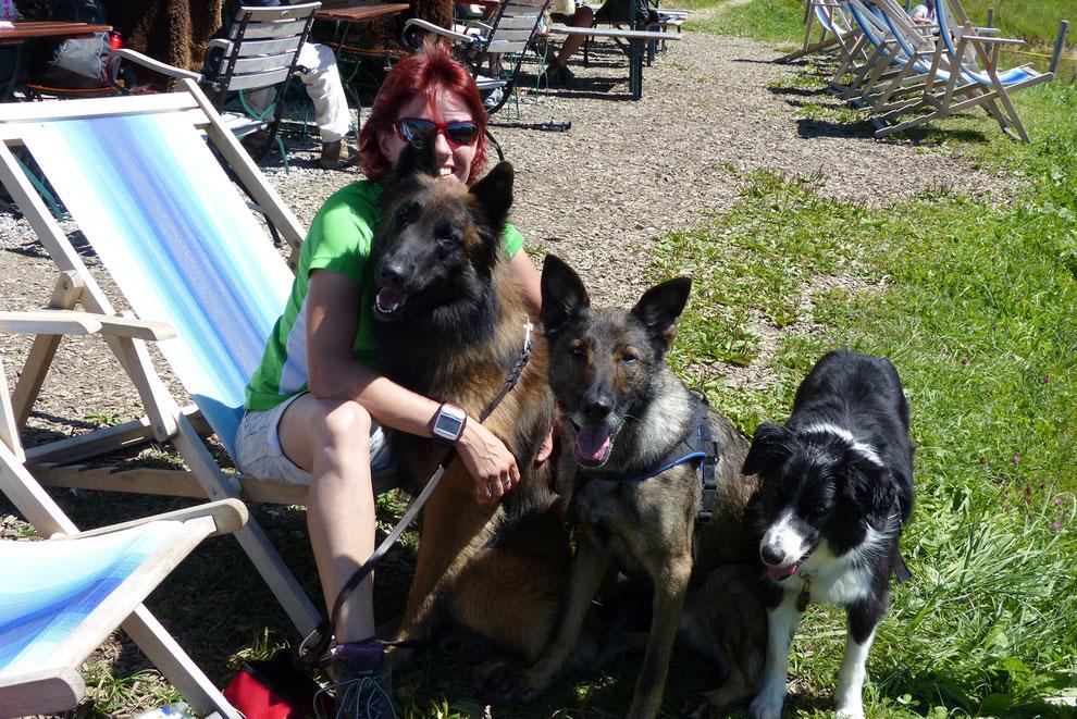 Wandern mit mehreren Hunden: Beate und ihre Schäfermeute.