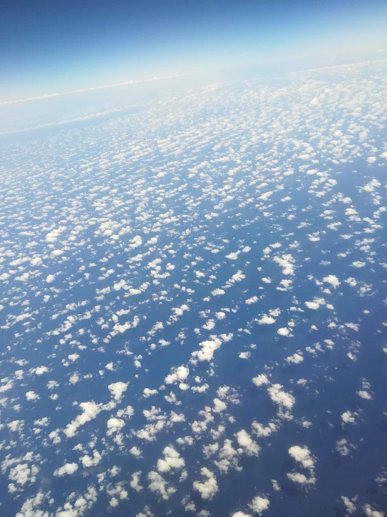 Wolkenschafe, von oben betrachtet