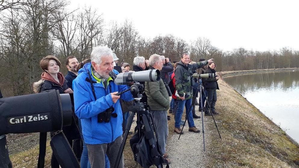 Impressionen von der Exkursion am Faiminger Stausee mit Harald Böck