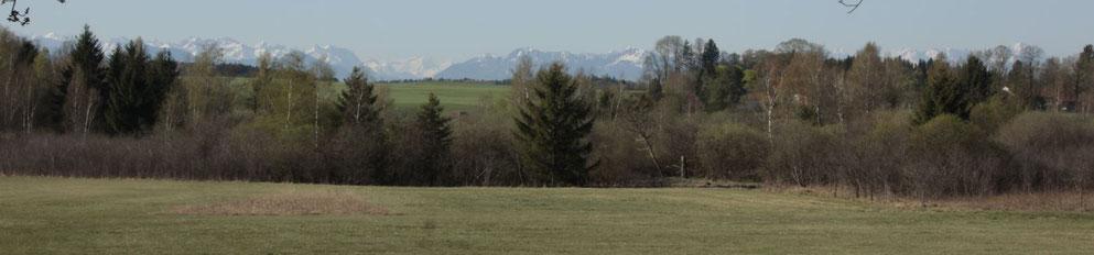 Sachsenhauser Filz - Blick nach Süden, Foto: Sabine Tappertzhofen