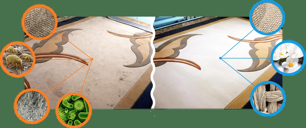 результат по химчистке ковров на дому: до и после химчистки