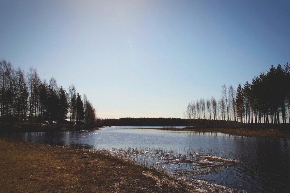 bigousteppes finlande parc