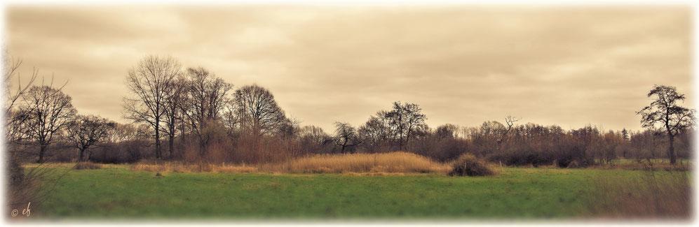 Eine Landschaft mit verstecktem Teich