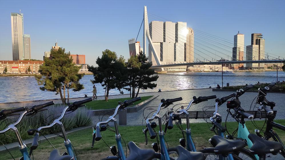 Boat Bike Tours Radtour Rotterdam
