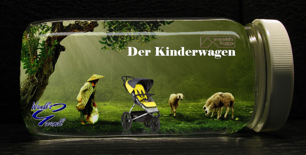 kinderwgen-kaufen-wandls-gwandl