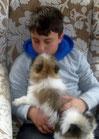kinderfreundliche Hunderasse