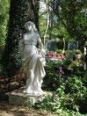 Printemps au jardin du gîte la Fontaine St Gervais - Aumont- Oise