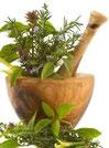 > > Phytotherapie