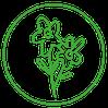 Pflanzen & Floristik