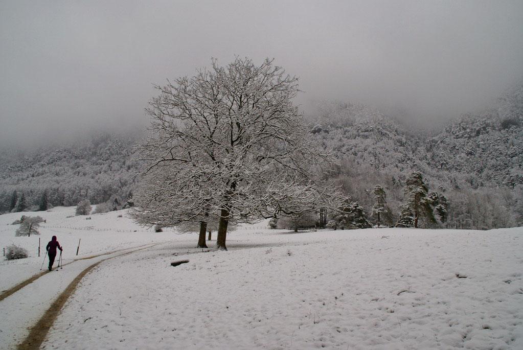 Klettersteig Jura : Erlebnisse im jura frankreich webazine