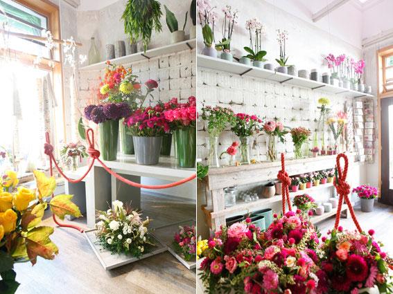 Ihr Blumenladen in München - Blumen Schachtner