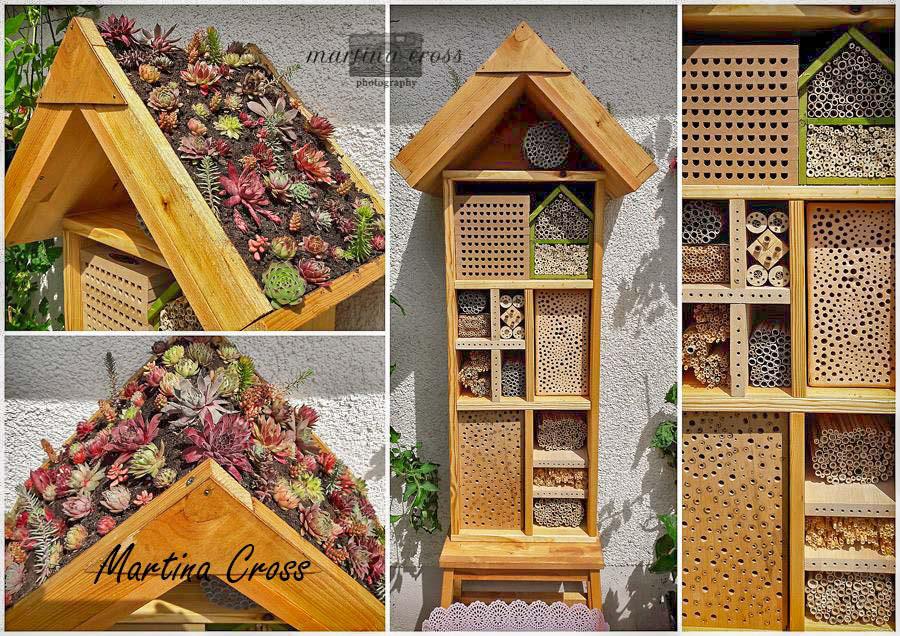 Positivbeispiele Fur Insektennisthilfen Wildbienenschutz Im