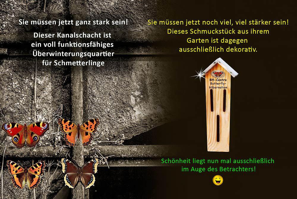 Insektenhotel Insect Hotel Nisthilfe Nesting Aid Insektennisthilfe Schautafel Poster Schmetterling Erfly Überwinterung Hibernation Bug House Kleiner