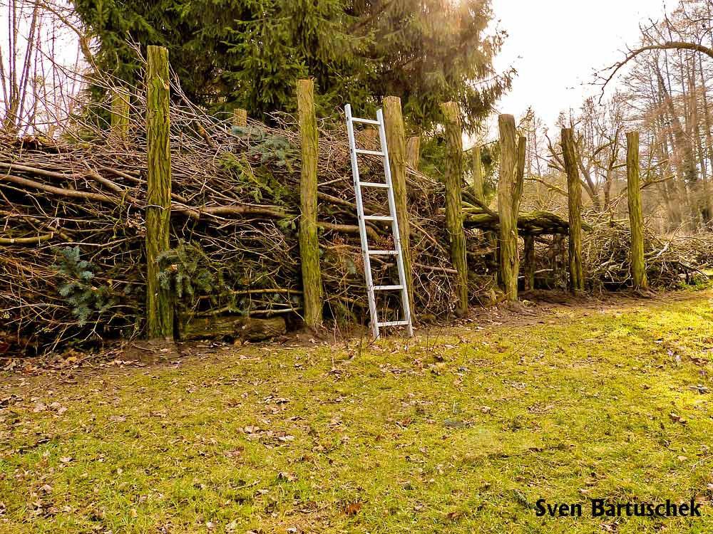 Etwas Neues genug Gefüllter Totholzzaun nach Art des Hauses - Wildbienenschutz im @HV_52