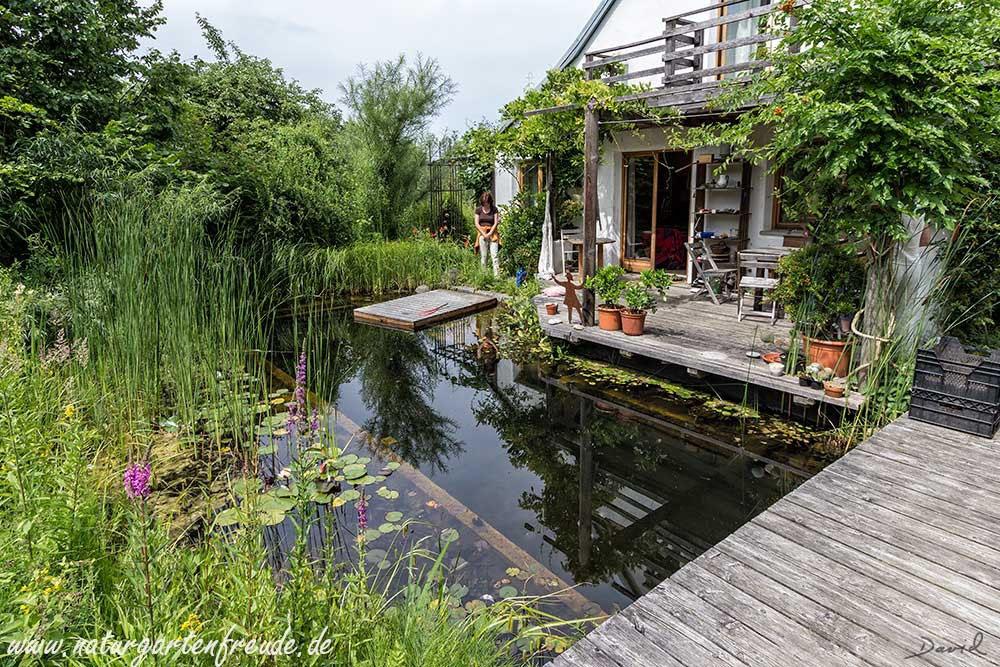 Schwimmteiche Wildbienenschutz Im Naturgarten
