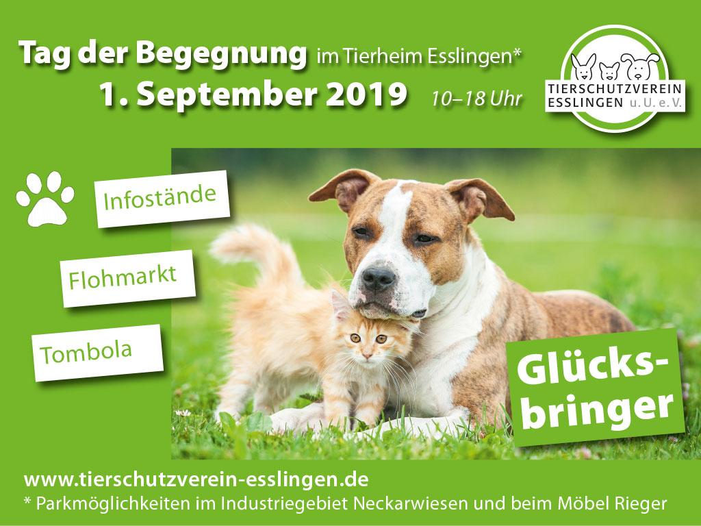 Wir freuen uns über Ihren Besuch im Tierheim Esslingen. Es gibt wieder viel  zu sehen und zu erleben.