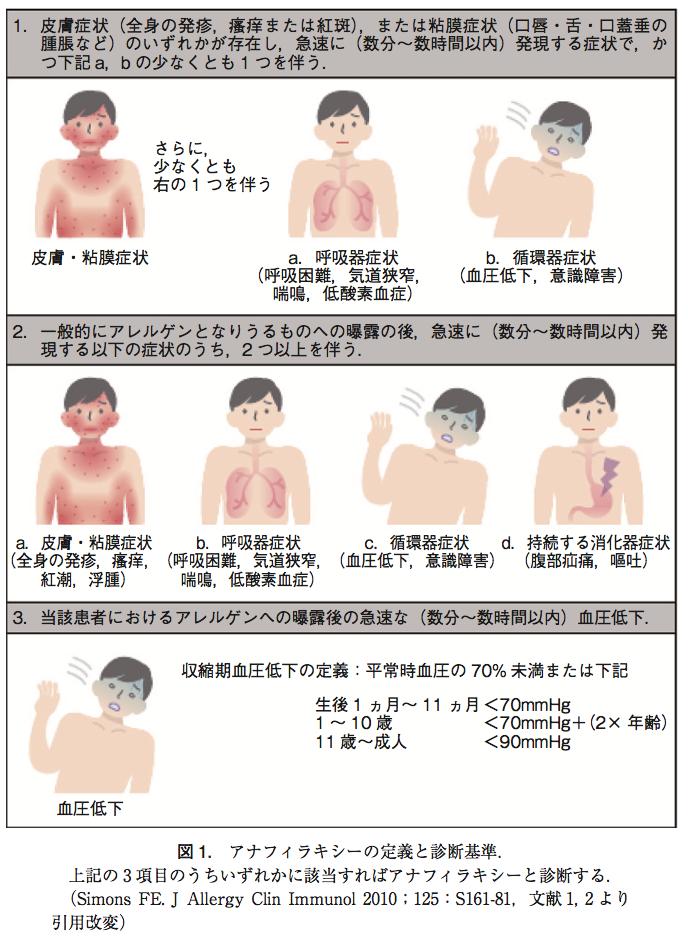 アドレナリン 筋肉 注射