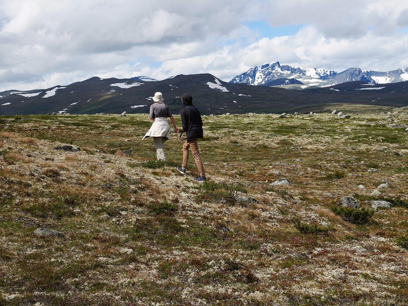 Weglos durchs Fjell mit tollem Panorama