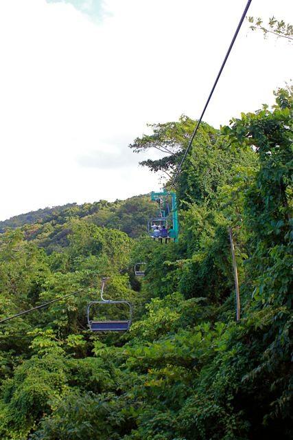 Skilift? Tropenwaldlift!