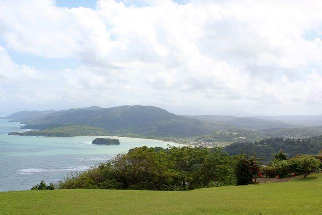 Firefly Garten und Karibik