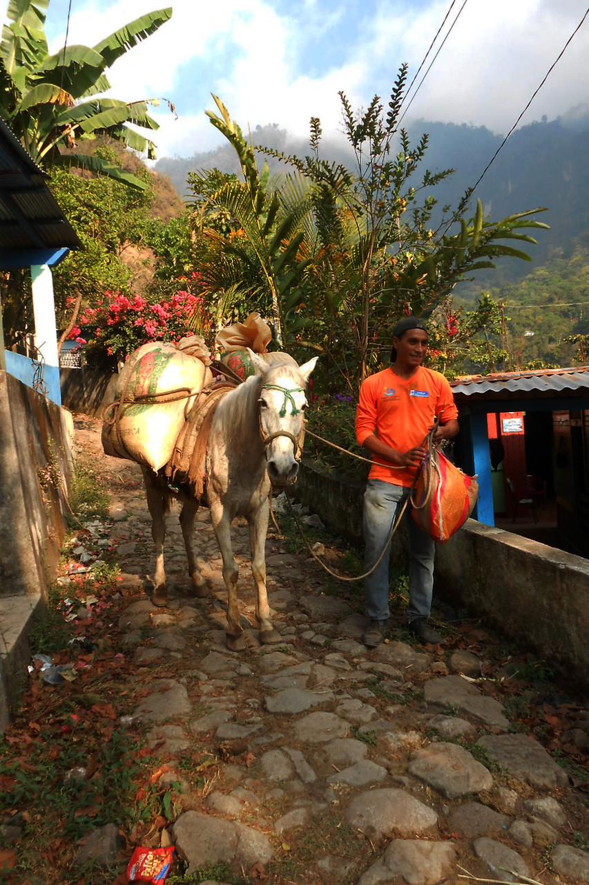 Kaffeeanlieferung für Rufino