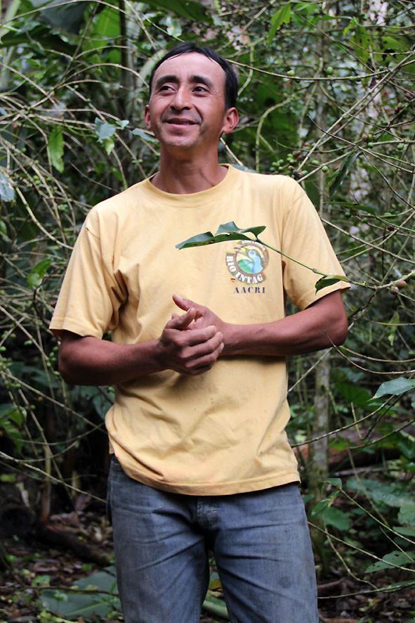 Kaffeefarmer Oswaldo Armendaris (AACRI)