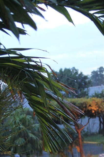 Tropenregen beobachtet aus dem Hotelzimmer