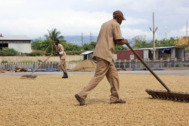 Nein, kein Schneeschippen auf Jamaica