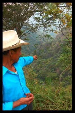 2016 Januar - Blick auf Don Ancelmos Pflanzung in der Ferne..