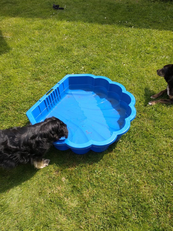 Abkühlung im Sommer - Wasser für Nichtschwimmer