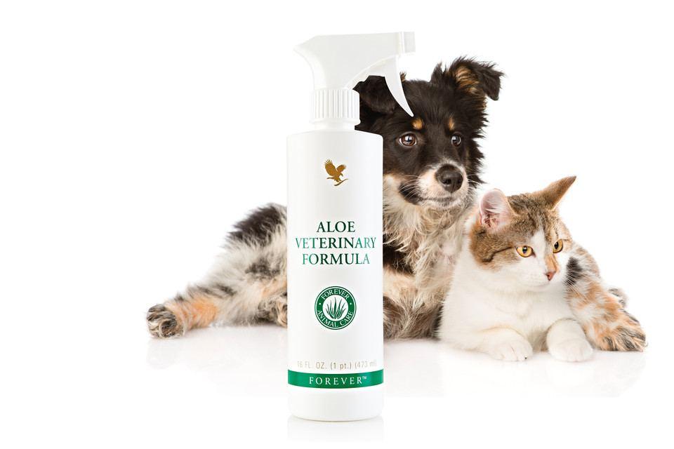 Aloe Veterinary Formula, Schutz und Pflege für Vierbeiner Forever Tierpflege Produkt online bestellen Schweiz