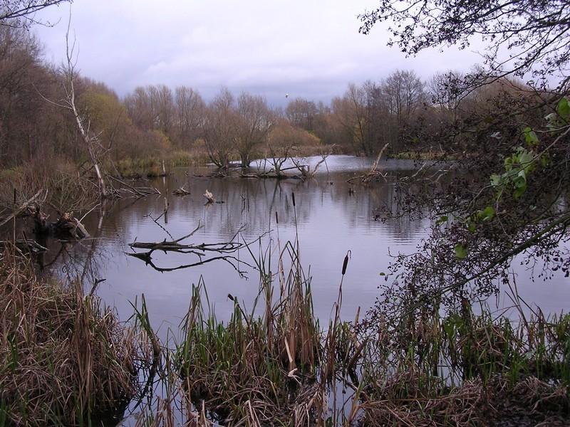 Plantsbrook Nature Park