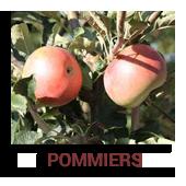 Pommiers