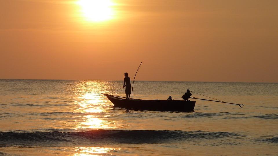 Schneida Loudn - Fischbestellung