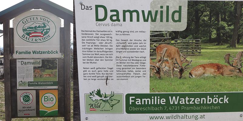 Bio Wildfleisch aus Prambachkirchen, Bezirk Eferding (Oberösterreich) - Markus und Bernadette Watzenböck - Über Uns 14