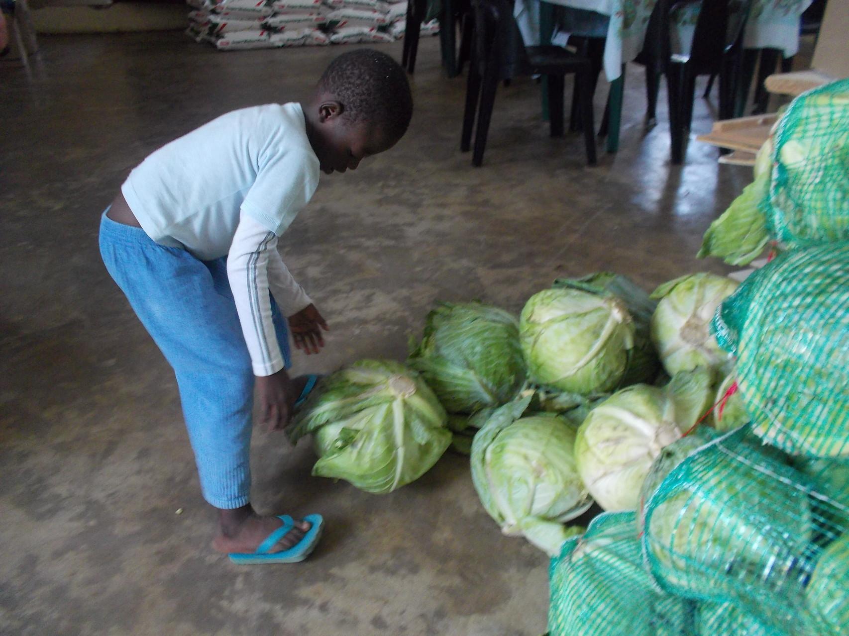 Waisenkind Nuglunga bringt einen Kohl