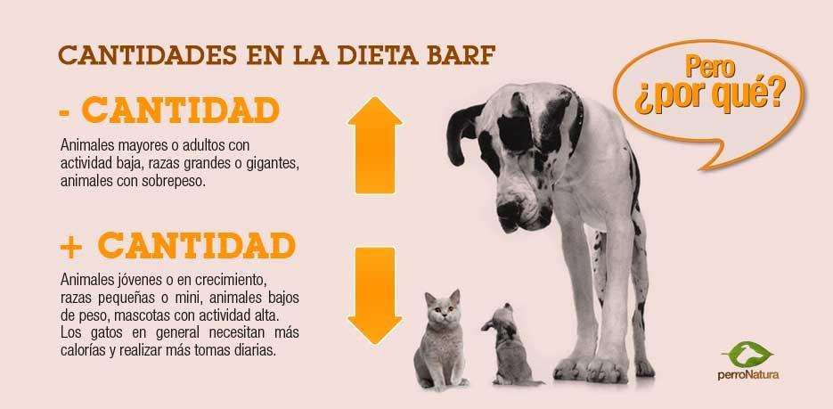 Dieta baja en proteinas para perros